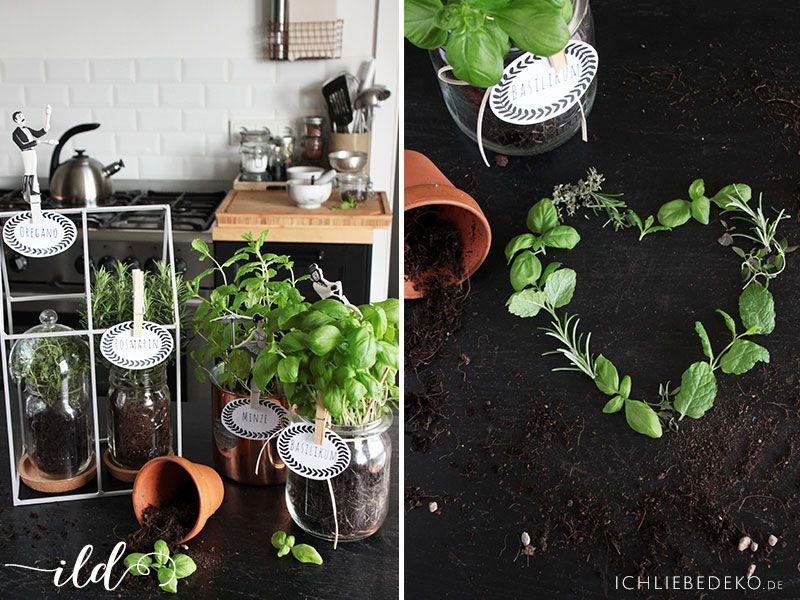 Dekoration-mit-Küchenkräutern