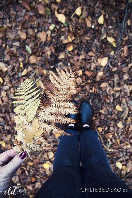 Herbstspaziergang-mit-Hunter-Gummistiefeln