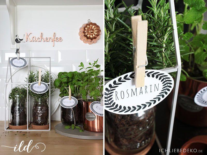 DIY Kräutergarten Für Die Küche