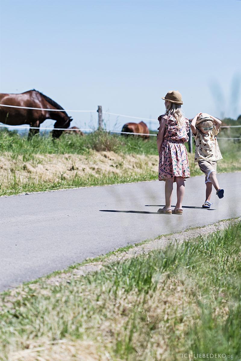 ausflug-mit-kindern-zu-pferden