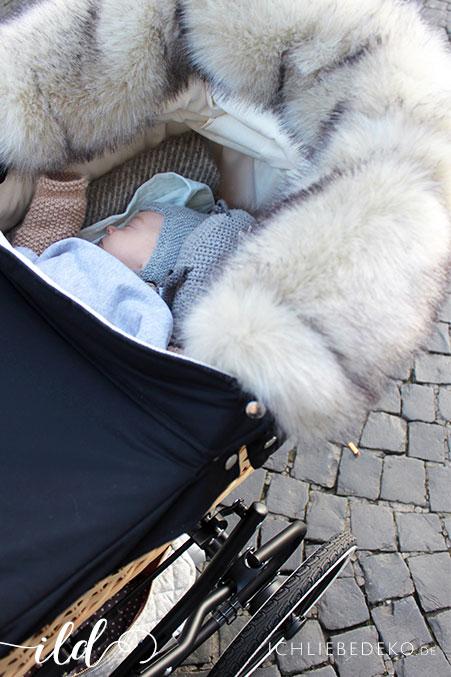 gemütlicher-Spaziergang-im-Kinderwagen