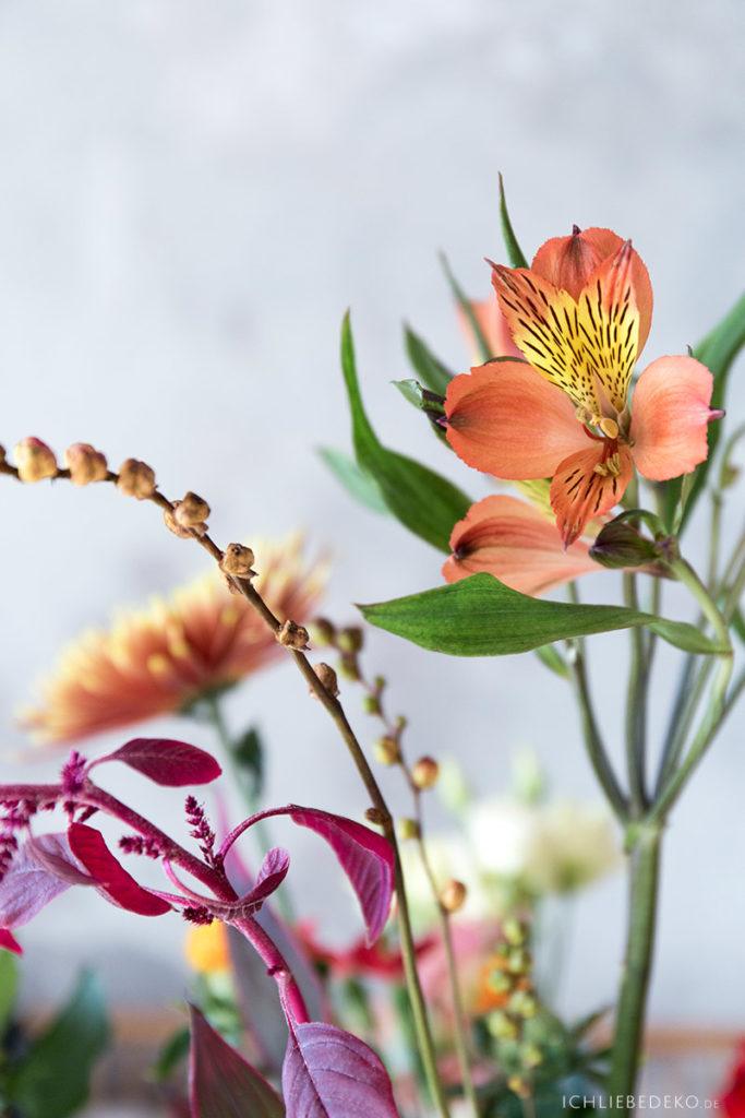 herbstblumen-indian-summer