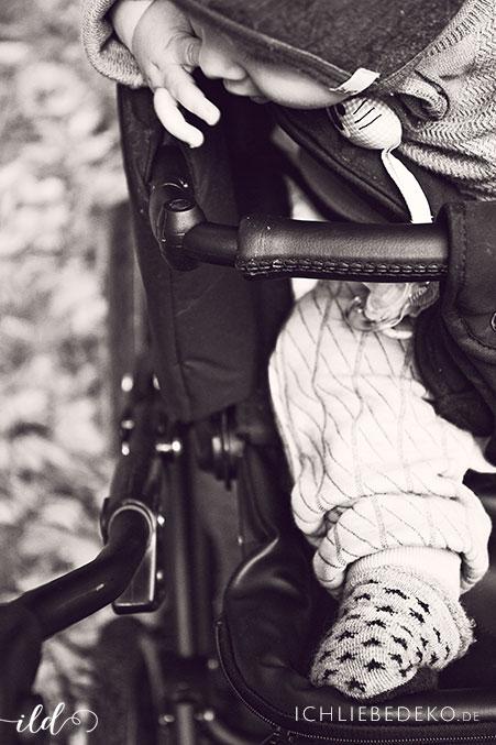herbstspaziergang-im-kinderwagen