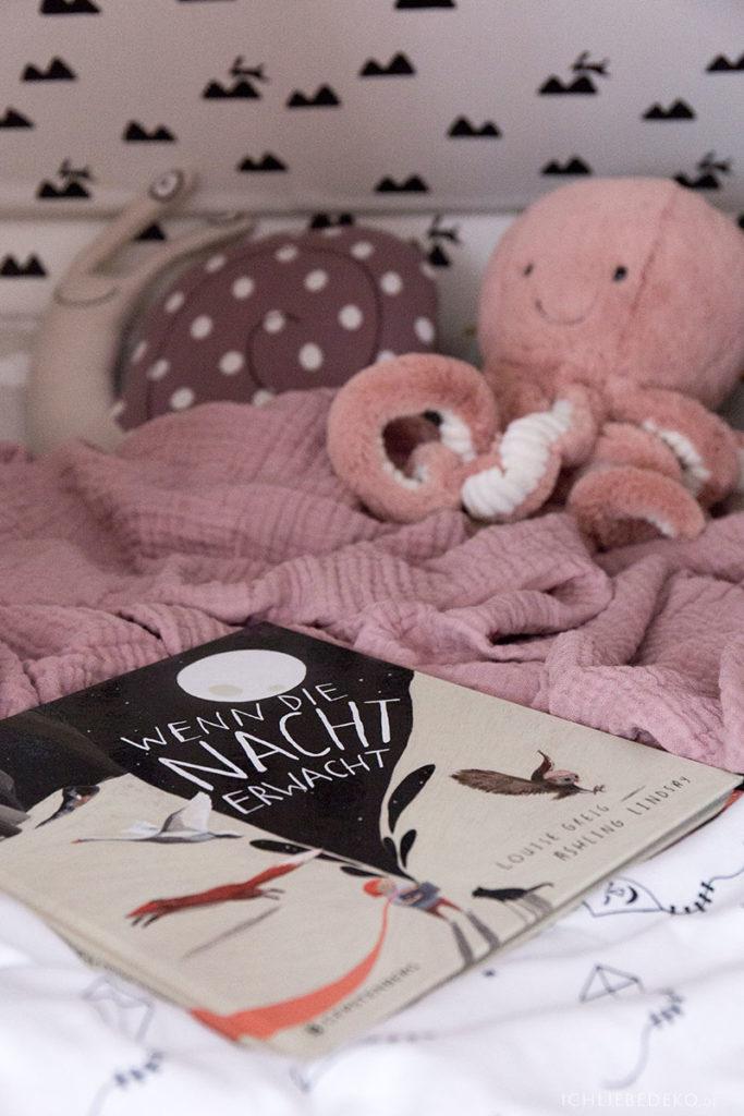 kinderbuch-enn-die-nacht-erwacht