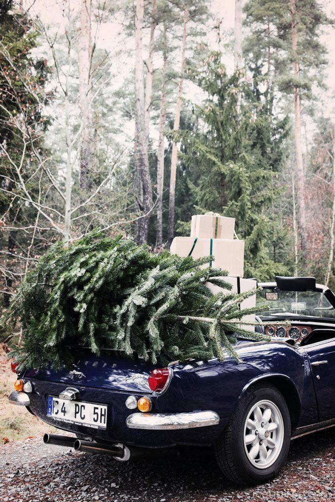 Oldtimer mit Weihnachtsbaum auf dem Dach