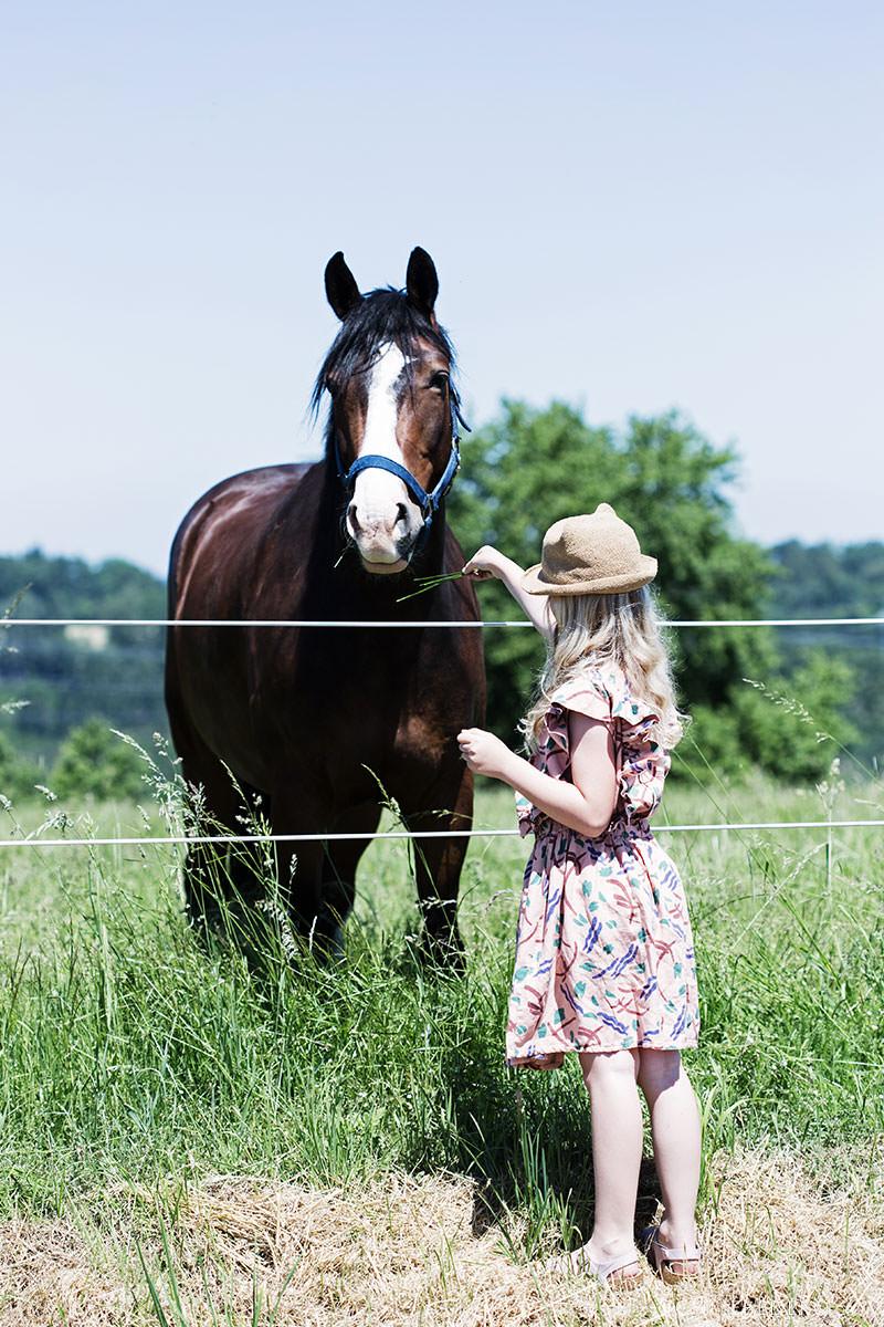 pferdemaedchen