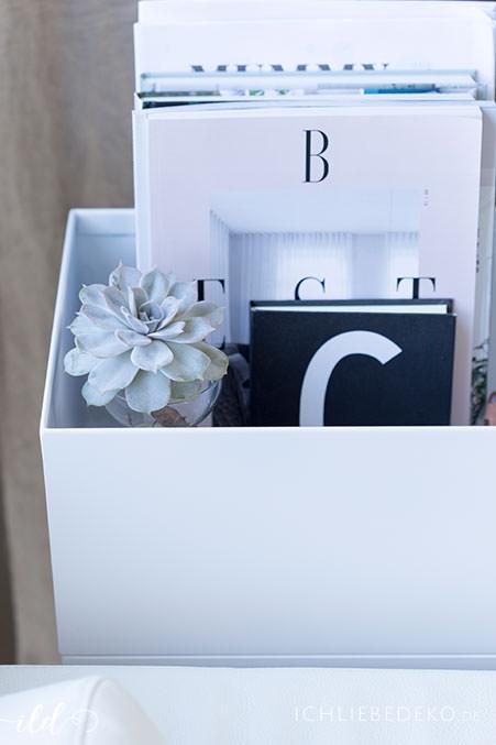 plantbox-mit--zeitschriften-und-sukkulenten-im-wohnzimmer