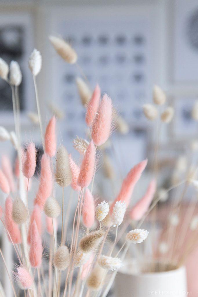trend-eingefaerbte-trockenblumen