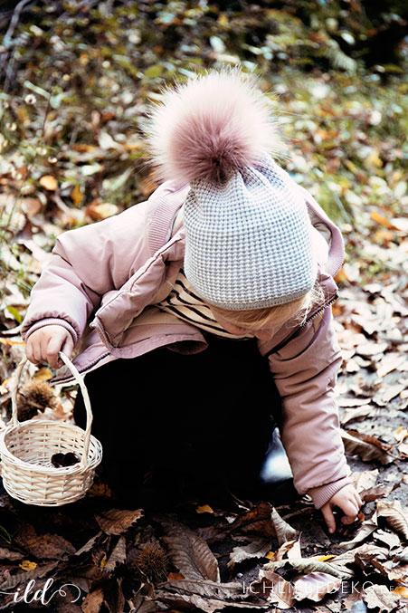 waldschaetze-sammeln-mit-kindern