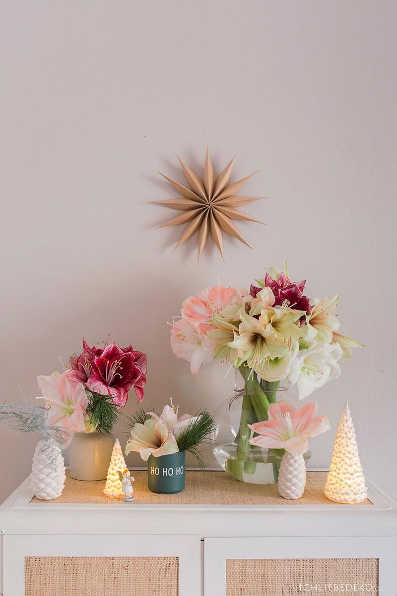weihnachtliche-dekoration-mit-amaryllis-im-wohnzimmer