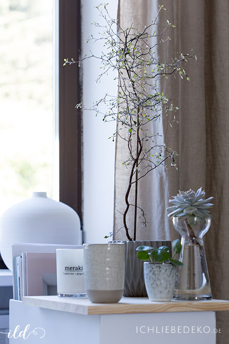 wohnzimmerdekoration-mit-pflanten-und-kerzen
